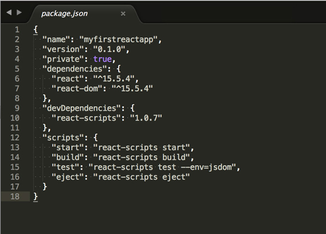 React Package Json